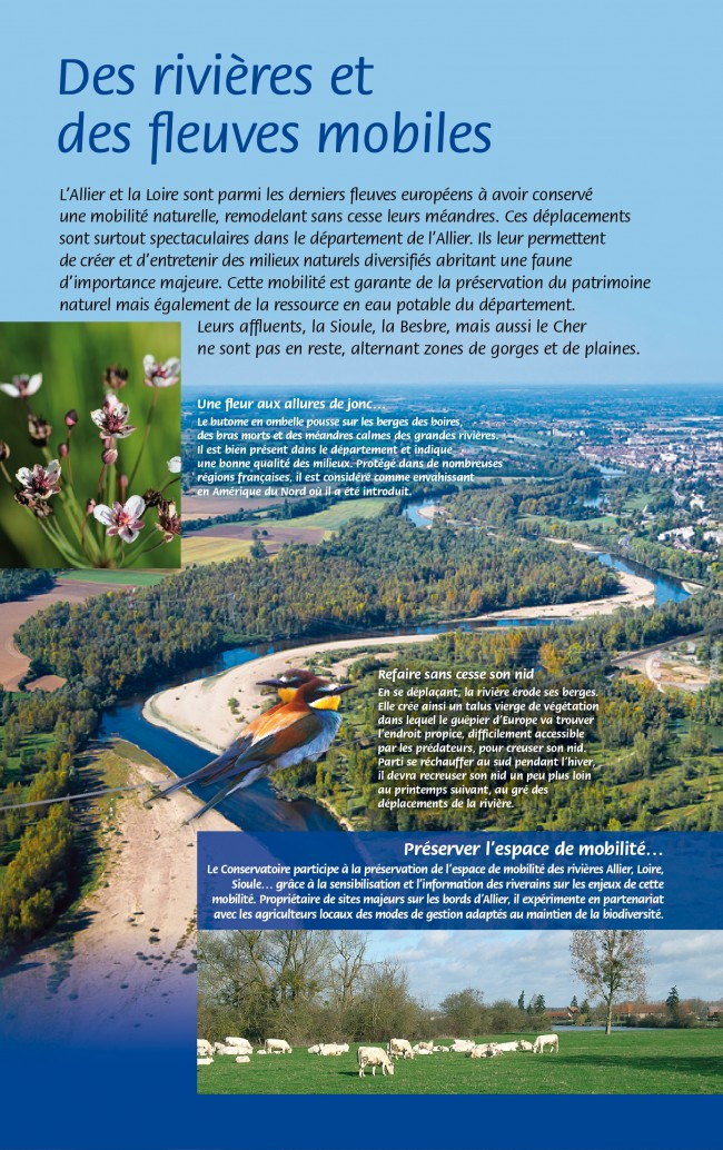 CEN Allier-rivières