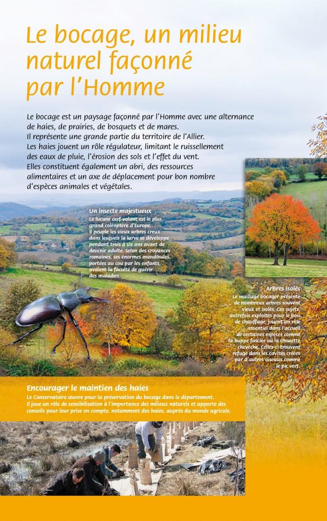 CEN Allier-bocage
