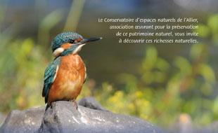 CEN-Allier-milieux-accueil