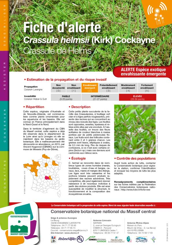 Fiche_alerte_Crassula_helmsii